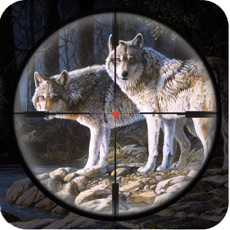 Activities of Angry Wolf Attack Sim