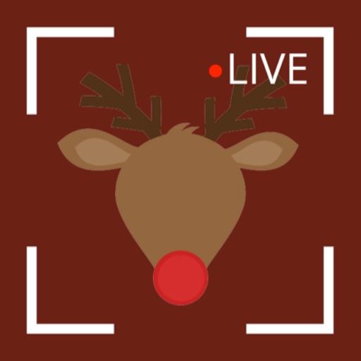 Reindeer Cam Christmas 2018