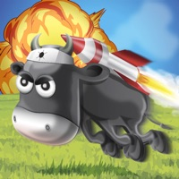 Codes for Rocket Cows Hack