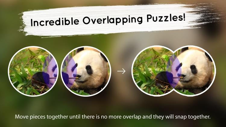Venn: Jigsaw Puzzle