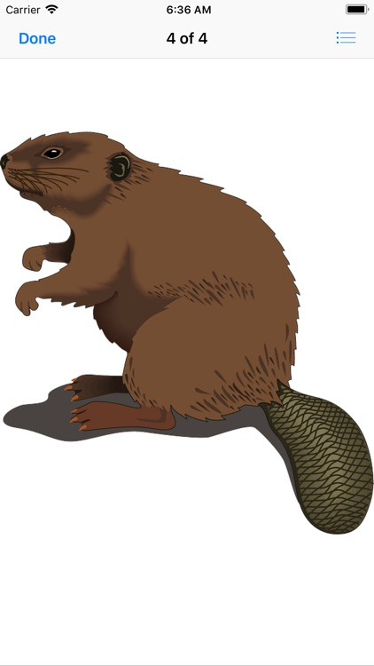 Best Beaver Stickers screenshot-5