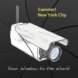 Camster! New York City