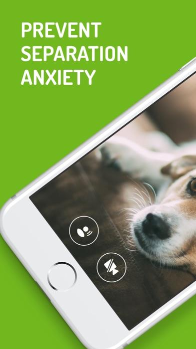 Dog Monitor Screenshot