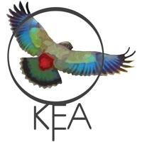 Codes for Kea: Create Birding Quiz Games Hack