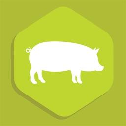 mHealth Swine