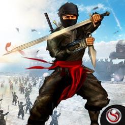 Aeolus the epic ninja by Mr-Crazy-Man on DeviantArt