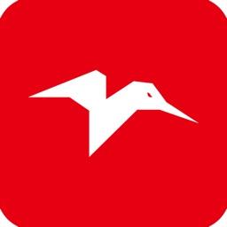 Fly Kolibri