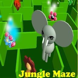Jungle Maze