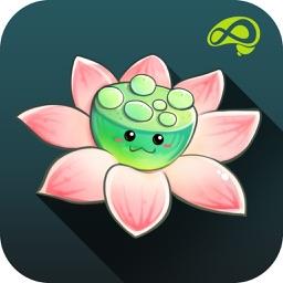 Zen Garden-Release mind stress