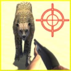Activities of Desert Hunting Patrol 3D