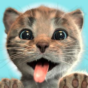 Little Kitten Adventures app