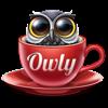Owly - Prevent Display Sleep