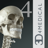 Essential Skeleton 4 - 3D4Medical.com, LLC