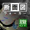 断面図ウォーカー腹部CT-Ryo Matsuda