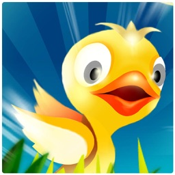 Egg Chick - Casual Games