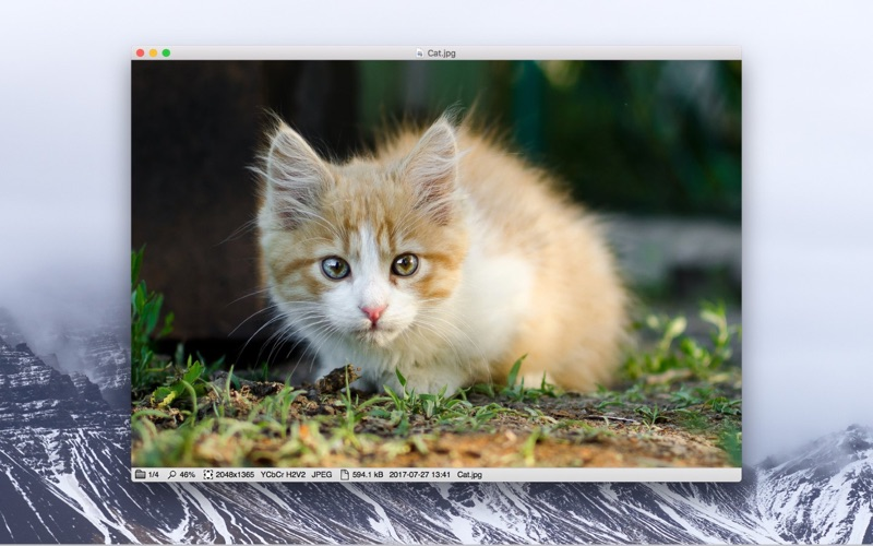 Xee³: Image Viewer and Browser Screenshot
