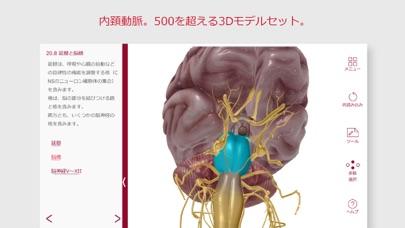 解剖学的構造と生理学スクリーンショット