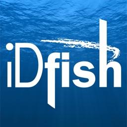 iDfish