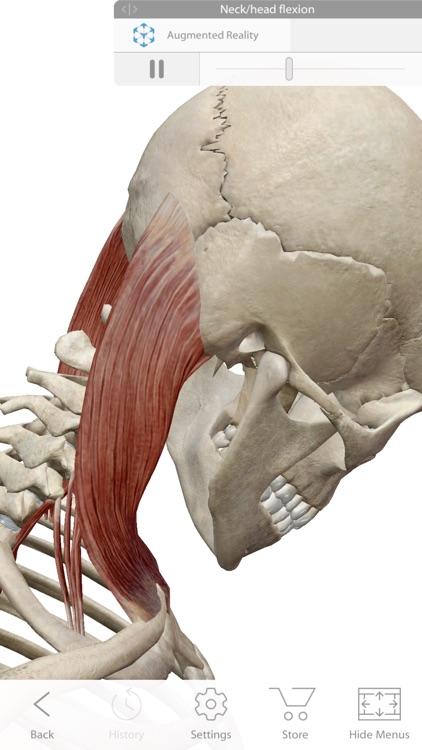 Human Anatomy Atlas 2019 screenshot-5