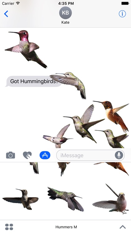 Hummingbirds - Medium (Retina) screenshot-0