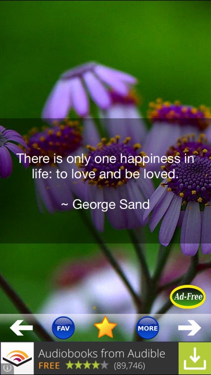 Love Quotes and Sayings!