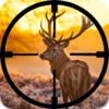 Shoaib Sheikh - Deer Hunter - Big Buck Hunter artwork