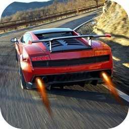 Real Fast Car Driving