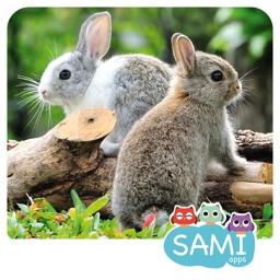 Sami Tiny FlashCards Animals 6 languages kids apps