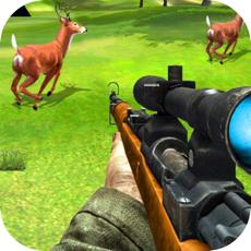 Activities of Shooting In Safari