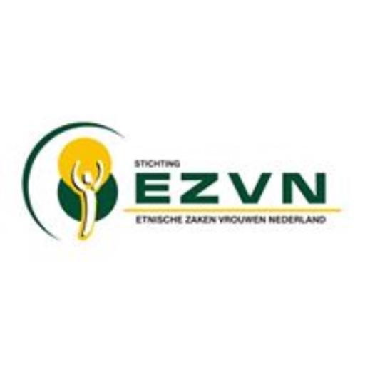 EZVN icon