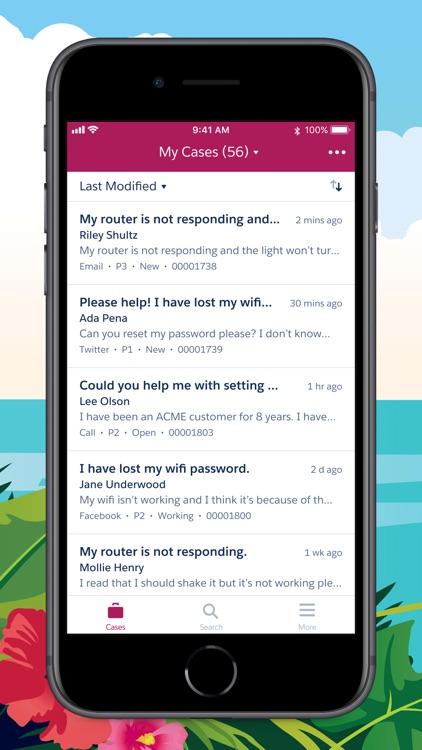 Salesforce Service Cloud screenshot-3