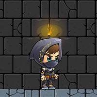 Codes for Ninja Survivor Hack