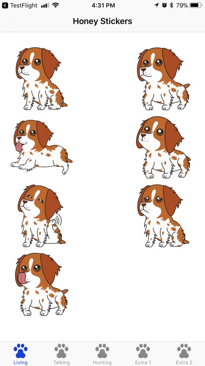 Honey the Brittany Spaniel