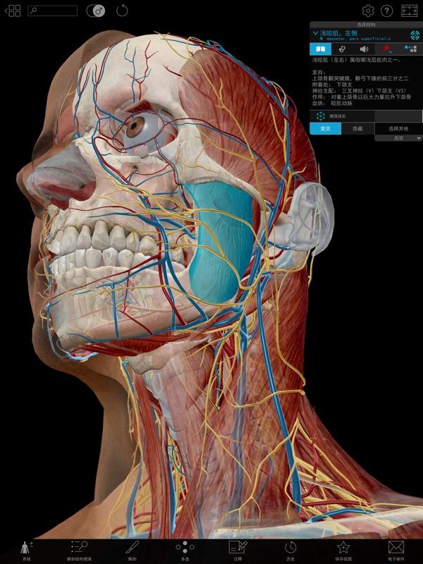 2017版人体解剖学图谱截图1