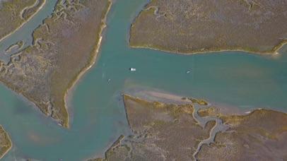 South Carolina Tide Chart Screenshot