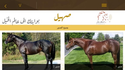 Screenshot of صهيل - Saheil App