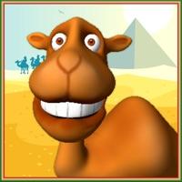 Codes for Talking Camel Pet Hack