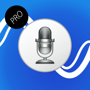 Voice Translator Professional app