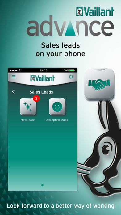 Vaillant Advance screenshot four