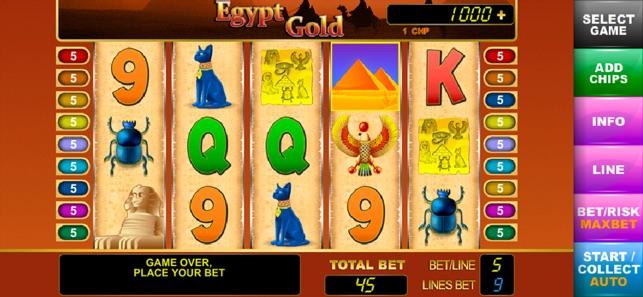 Besten online casinos australian terrier