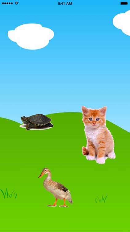 Toddler Shapes Game screenshot-4