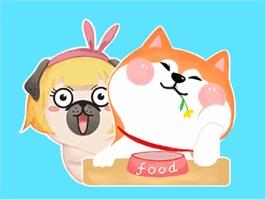 Puggy and Corgi