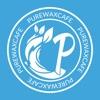 Pure Wax Cafe & Studio