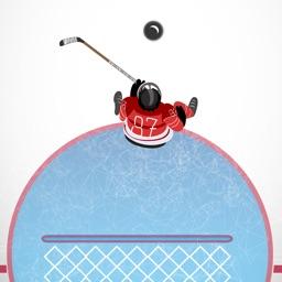Hockey Goal Stopper