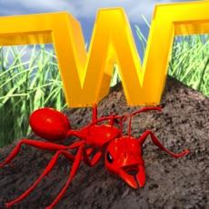 Activities of Ant Wars Next