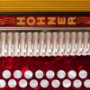 Michael Eskin - Hohner B/C Mini-Accordion アートワーク