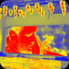 Thermal Vision - Live Camera