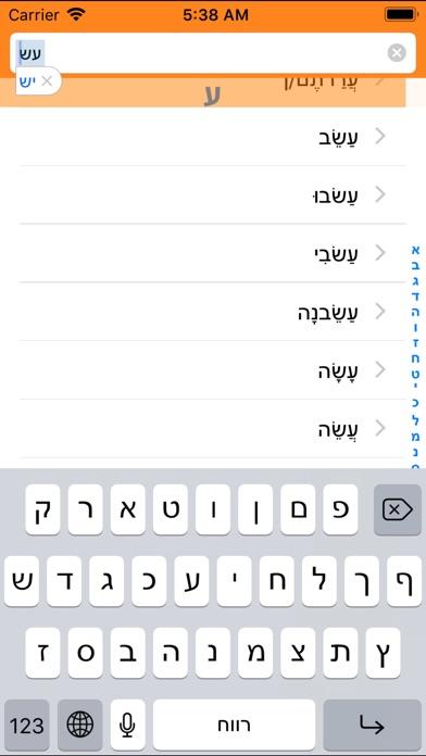 Hebrew Verbs Mobile Screenshot 1