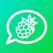 WhatsBerry - WhatsApp for iPad