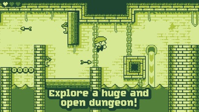 Tiny Dangerous Dungeons Screenshots